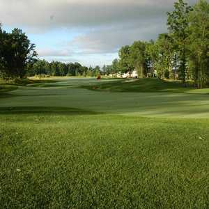 Grey Hawk GC