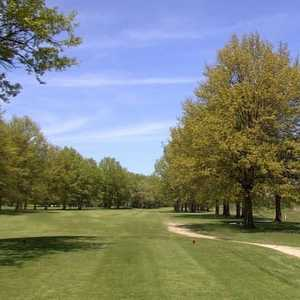 Avondale GC: #11