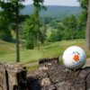 A view from Valley Vista Golf Course