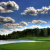 View of the 17th hole at Ellsworth Meadows Golf Club