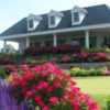 A view of the clubhouse and practice putting green at Westfield Group Country Club