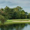 A view of hole #2 at Pinnacle Golf Club.