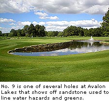 No. 9 at Avalon Lakes Golf Club