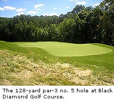 No. 5 at Black Diamond Golf Course