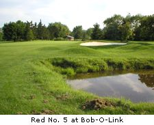Red No. 5 at Bob-O-Link